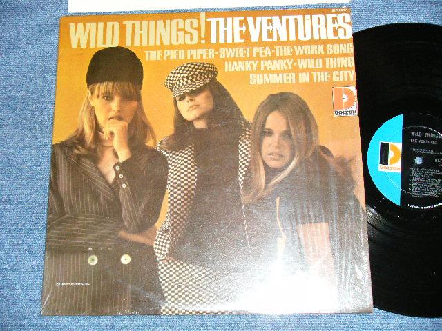 """画像1: WILD THINGS!  """"D"""" Mark Label   MONO"""