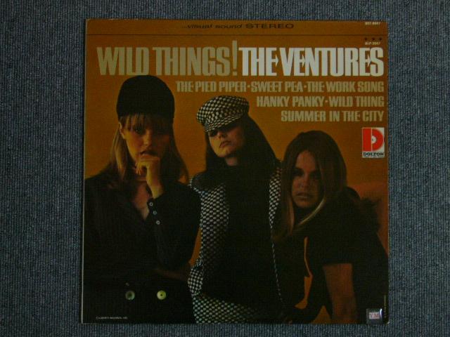 """画像1: WILD THINGS! """"D"""" Mark Label"""